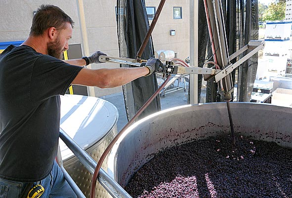 OurPass-Winemaking02