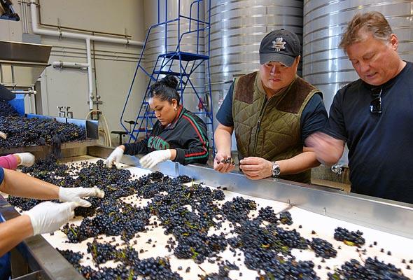 OurPass-Winemaking01