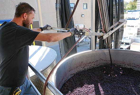 OurPass-Winemaking02