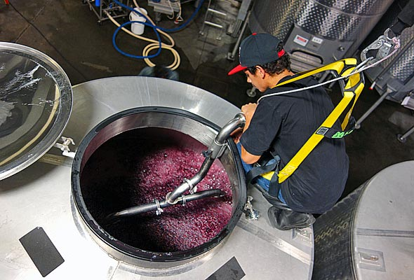 OurPass-Winemaking05