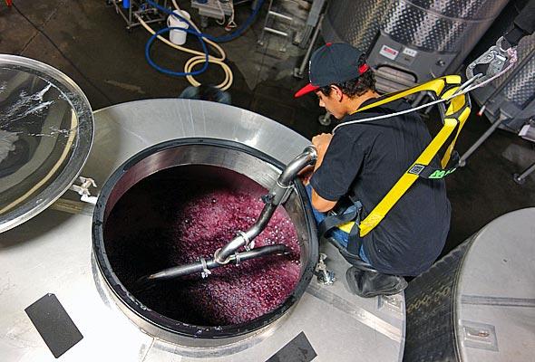 OurPass-Winemaking05